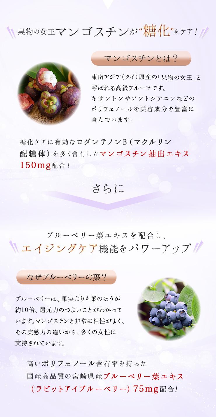 027319_mangosteen-blueberry-leaves004